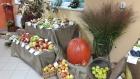Podzimní výstava ovoce 2015